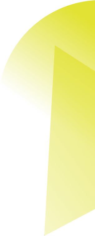 mlv11